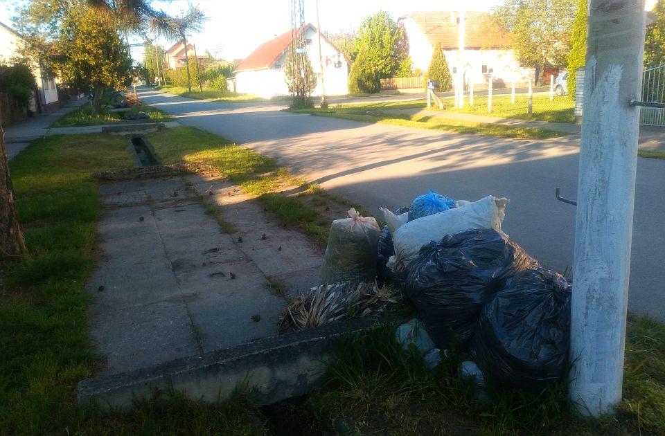 """FOTO: Baštenski otpad se nedeljama gomila na ulicama Novog Sada i prigradskih naselja, u """"Čistoći"""" poručuju da nemaju dovoljno radnika"""