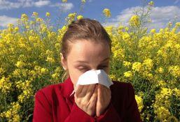 Sve više ljude ima problema sa alergijama