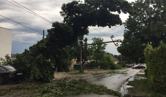 FOTO, VIDEO: Oluja napravila haos u Novom Sadu, otpao deo limenog krova sa Agrovojvodine