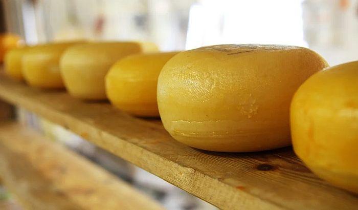 Kaluđeri ne mogu da prodaju sir: Pokušali smo da objasnimo kravama da proizvode manje mleka, ali nisu shvatile