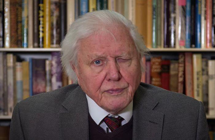 VIDEO Dejvid Atenboro: Ako nastavimo sadašnjim putem, civilizacija će se raspasti