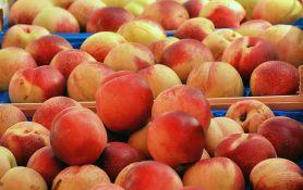 Ponovo dozvoljen izvoz koštičavog voća u Rusiju