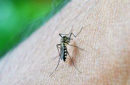 U Vojvodini 12 slučajeva groznice Zapadnog Nila, čuvajte se komaraca