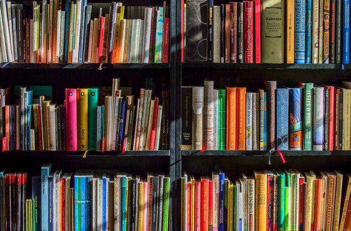 U Beograd iz Austrije stiglo 30.000 knjiga