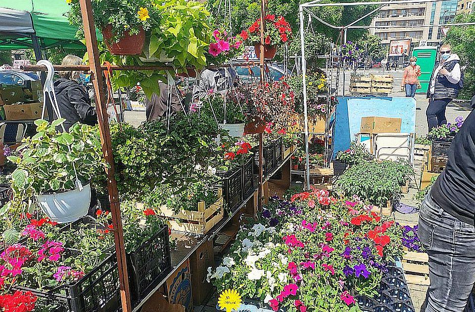 I danas Novosadska cvetna pijaca na platou ispred Spensa