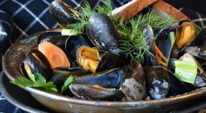 Istraživači: Ovo su plodovi mora u kojima ima najviše mikroplastike