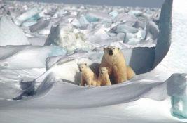 Rusija otvara Muzej Arktika