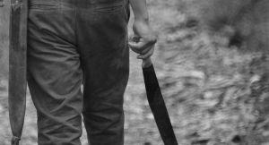 VIDEO: Lopovi mačetama napali baku i deku, oni ih isprebijali stolicama
