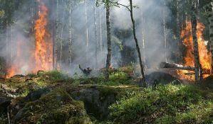 Šumski požar na grčkom ostrvu Hios, evakuisana dva naselja