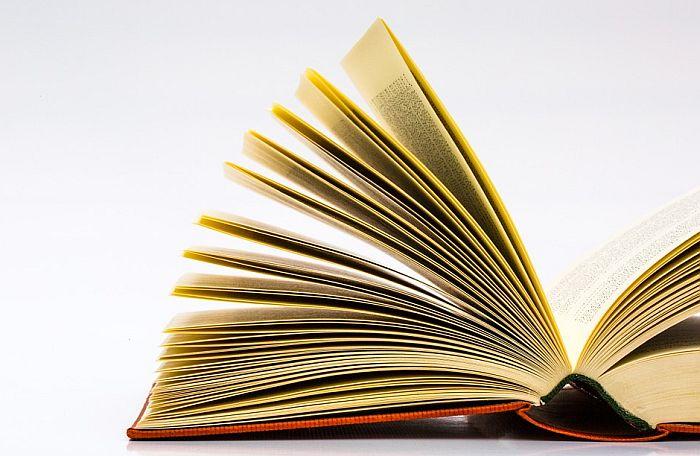 VIDEO: Pisac Vule Žurić čita onlajn odlomak svog nagrađivanog romana