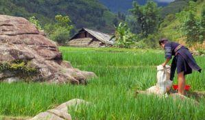 Pokrajinski ombudsman: U selima nema sigurnih kuća koje bi štitile žene od nasilnika