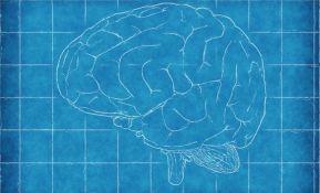 Potvrđene promene na mozgu diplomata SAD koje su bile na Kubi