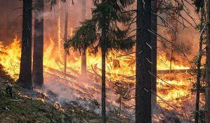 Šumski požari širom Rusije