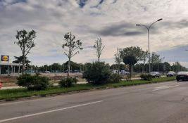 FOTO Stabla posečena i orezana: Uređenje Lidla izazvalo revolt građana, svi se ograđuju