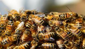 Trovanjem košnica napravili štetu od 4,4 miliona, osumnjičeni tvrde da upotrebljena količina pesticida nije opasna za pčele