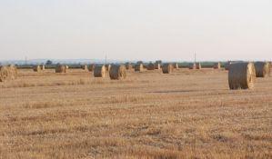 Porodična poljoprivredna penzija samo 8.000 dinara
