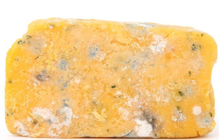 Tragovi najstarijeg sira na svetu pronađeni u Dalmaciji