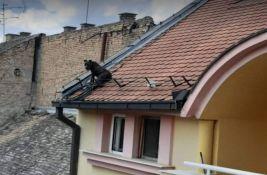 FOTO: Pas spašen sa krova zgrade u centru Novog Sada