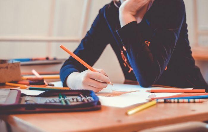 Paradoksi u obrazovanju: Stalno se priča o reformi, ništa važno ne menjamo