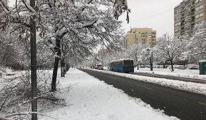 Rekordna visina snega u Novom Sadu i dalje od pre 34 godine