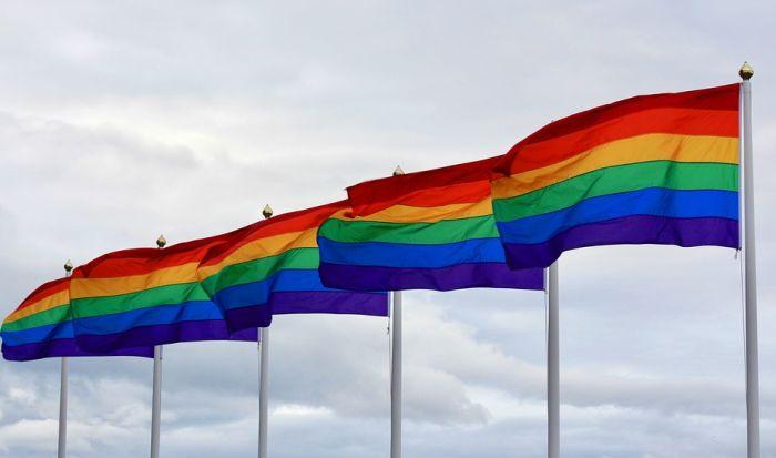 Protivnici prve gej parade u Sarajevu došli čak iz Švajcarske, učesnicima povorke stigla podrška iz Srbije