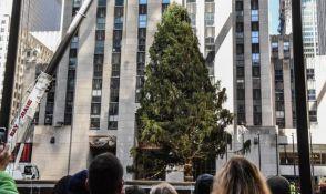 VIDEO: Njujorška jelka stigla u Rokfeler centar, visoka je 24 metra