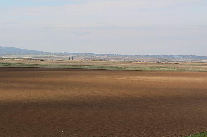 Najskuplje oranice u Sirigu i na Čeneju