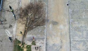 Zbog radova na Satelitu uklonjeno drvo, u Gradu tvrde da neće stradati još stabala