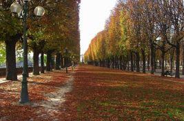 Pariz će posaditi 170.000 stabala kako bi poboljšao klimu u gradu
