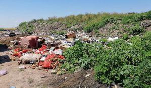 FOTO: Na divljoj deponiji u Bačkom Dobrom Polju opasan otpad i leševi životinja
