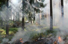 Gori šuma na Zlatiboru, dim se širi selom