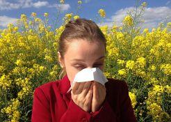 Razlike sezonskih alergija i infekcija sličnih gripu
