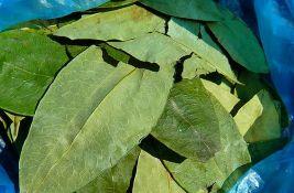 Bolivija: Uništena tri postrojenja za proizvodnju kreka