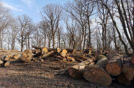 Eparhija sremska i privatnici zarađuju na seči šuma Fruške gore, aktivisti podneli prijave