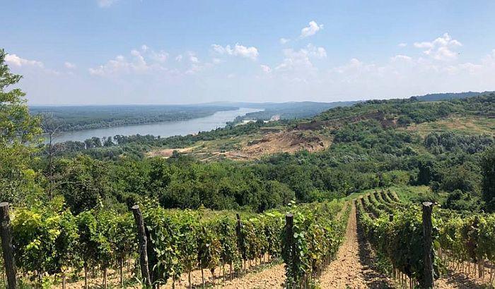 VOICE: Jedna od vlasnica Galensa kupila 205 parcela na Fruškoj gori
