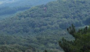 Stabla se našla na putu zip-lajna na Fruškoj gori, pa posečena
