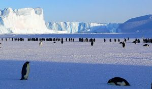 Odlomila se ledena santa površine veće od Londona