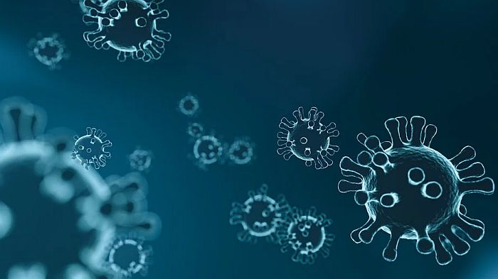 Prvi slučaj virusa korona u Danskoj
