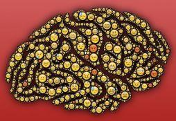 Ljudski mozak postaje
