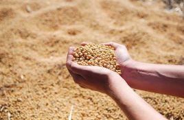 Ukrali 8,3 tone soje sa barže u Petrovaradinu