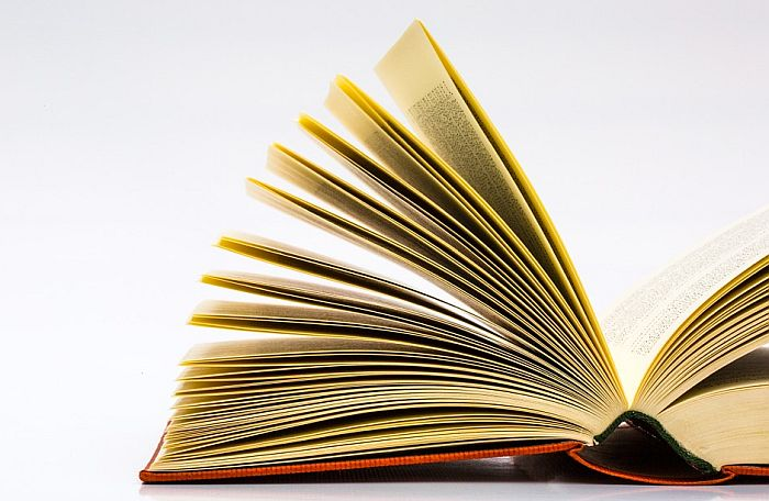 Sedam romana u finalu izbora za NIN-ovu nagradu