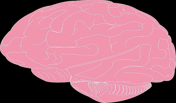 Mozak počinje da stari već u dvadesetoj godini, a glas tek u šezdeset i petoj