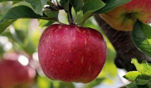 Falsifikatori koriste popularnost organske hrane, na policama