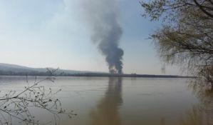 FOTO, VIDEO: Veliki požar u Beočinskom ritu, vatrogasci na terenu