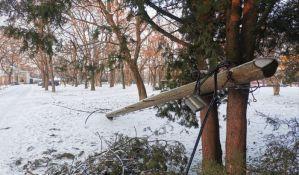FOTO: Bandera u Futoškom parku oslonjena na stabla, žice na stazi, drugi stub preti da se sruši i ugrozi živote