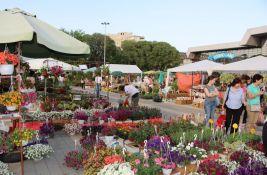 Druga jesenja Novosadska cvetna pijaca za vikend kod Spensa
