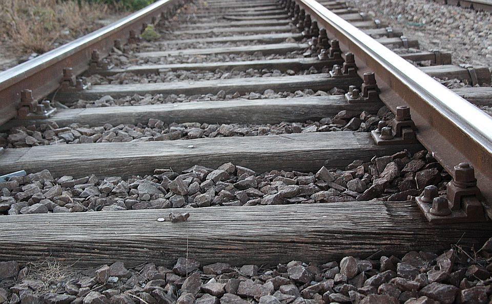 Novosađanin ukrao sto drvenih pragova sa deponije u Beški