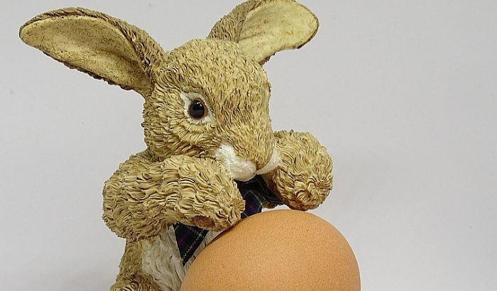 """Igraonica """"Otkud zecu jaje"""" u nedelju u Muzeju Vojvodine"""