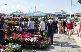 Treća prolećna Cvetna pijaca u petak i subotu kod Spensa