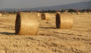 Novi Bečej: Poseban fond za mlade, država pomaže pri kupovini zemljišta